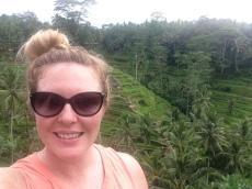 Rice terraces in Ubud, Bali